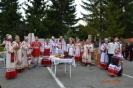 Фестиваль национальных культур и традиций Мост дружбы_9
